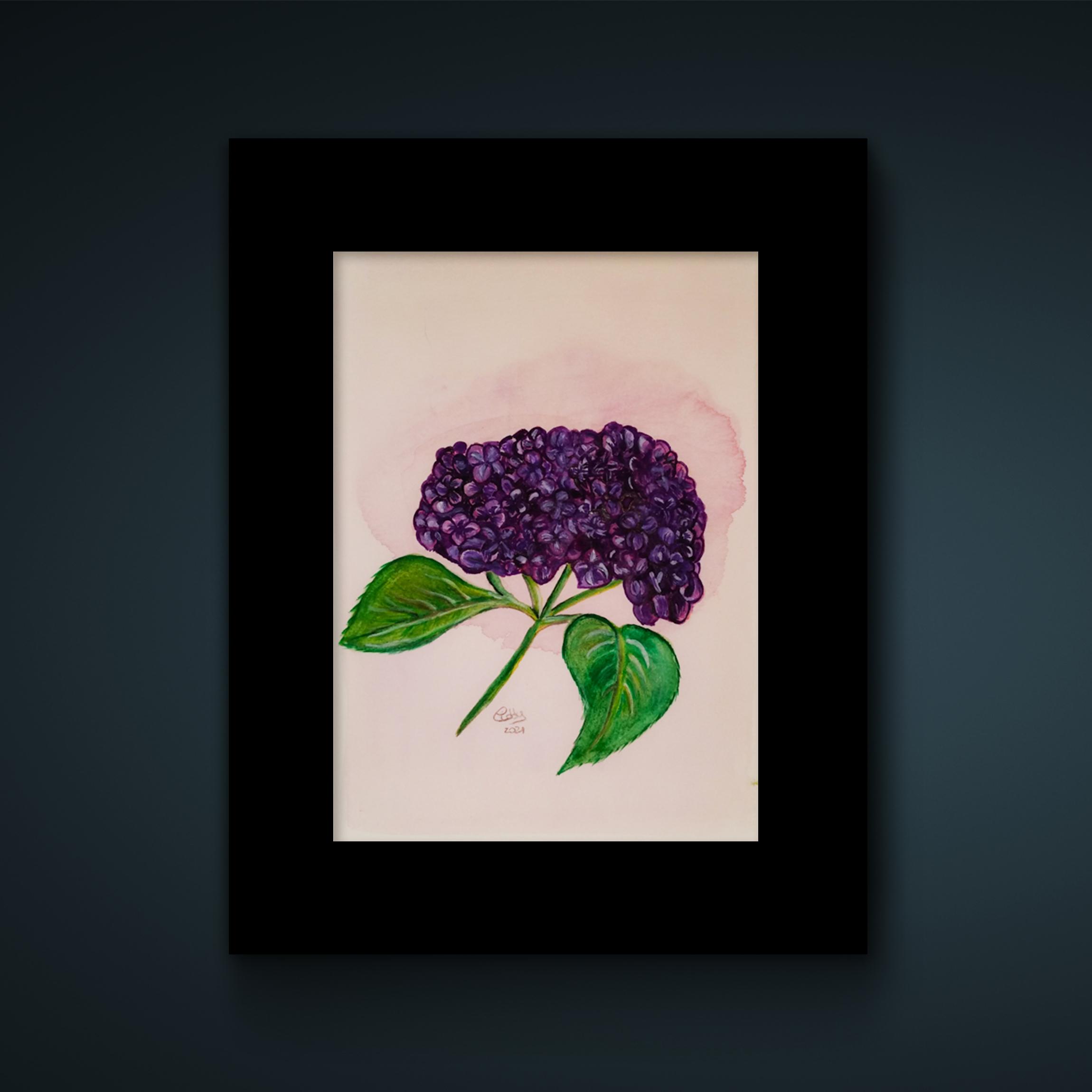 cadre noir et brin d'hortensia violet dessiné à l'aquarelle