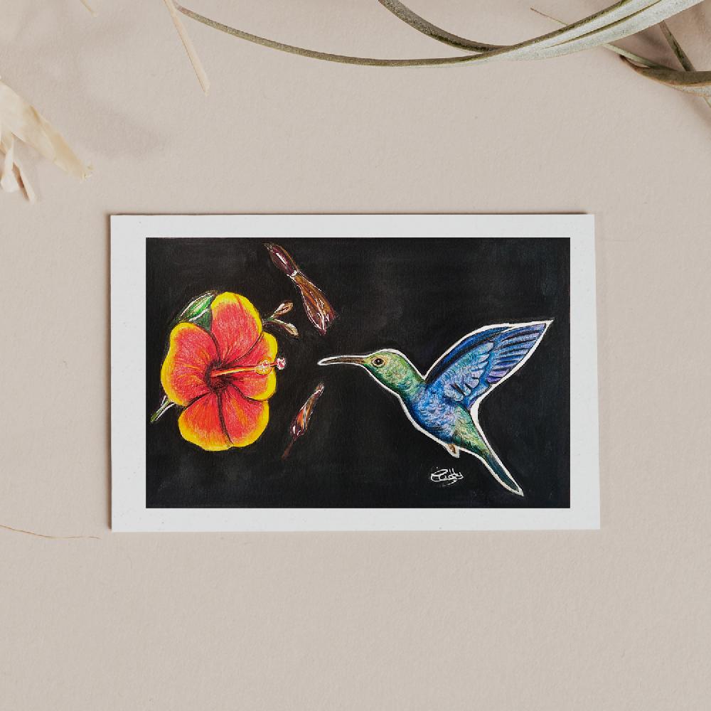 dessin crayon couleurs colibri et fleur